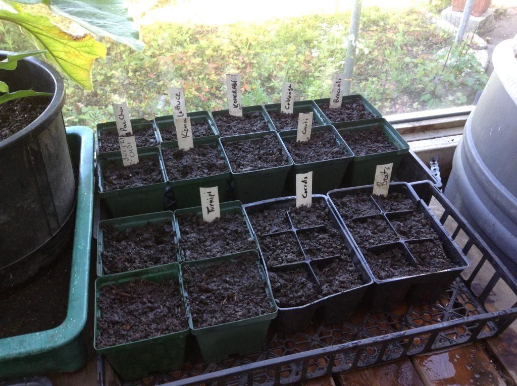 Seeding all done