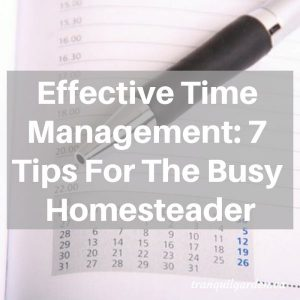 Effective Time Management: 7 Tips For The Busy Homesteader