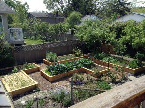The Best Ways to Make Amazing Progress in Your Garden