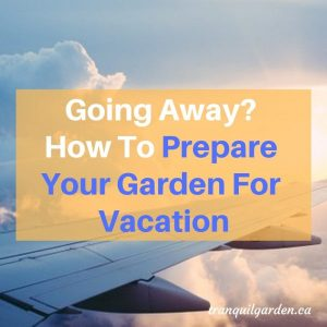 Going Away? How To Prepare Your Garden For Vacation