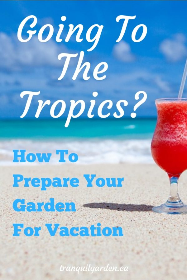 Are you going away on vacation soon? Are you worried that your garden won't survive? Learn simple tips and techniques to prepare your garden for vacation. #vacation #garden