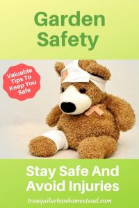 garden safety with teddy bear bandaged up
