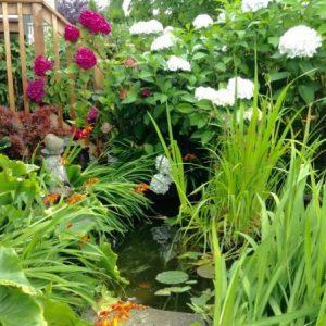 How To Satisfy The Five Senses In Your Garden