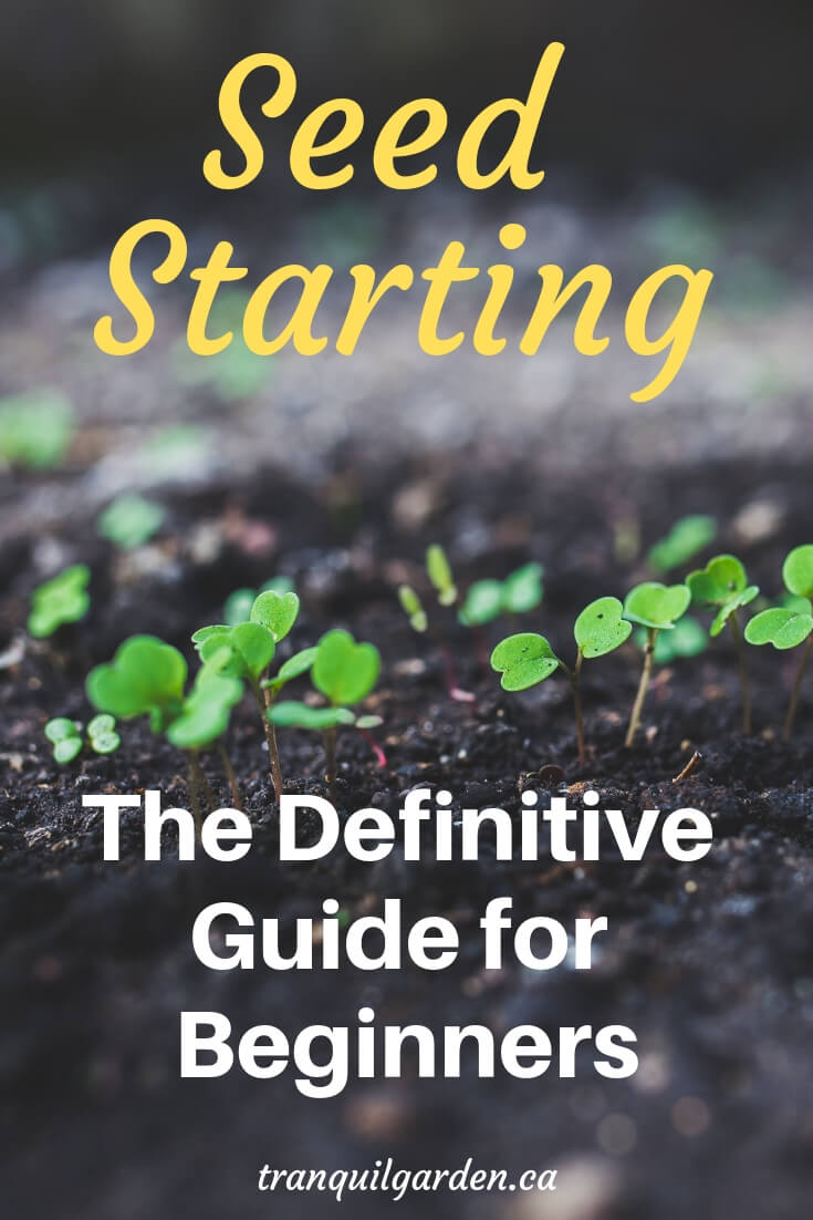 Growing your own plants from seed is very rewarding. With just a few simple supplies and easy-to-follow steps, you only need an hour or so getting your seed starting done. #seeding #seedstarting