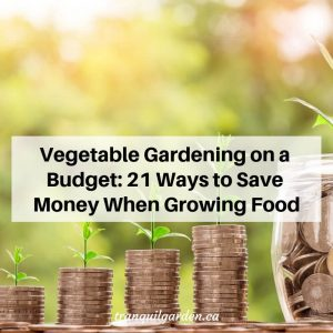 Vegetable Gardening on a Budget: 21 Ways to Save Money When Growing Food