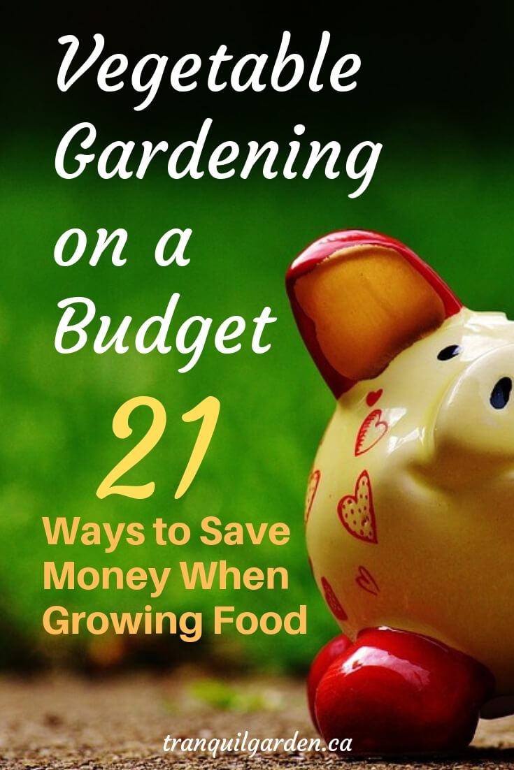 Tight on money? Still want to grow your own food at home? Don't wait to start. You can do vegetable gardening on a budget with these 21 ways to save money. #gardeningonabudget #savemoney #frugalgardening
