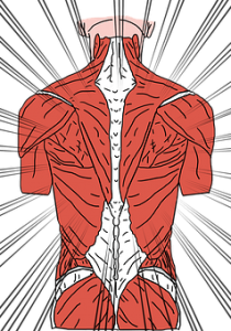 diagram showing back pain