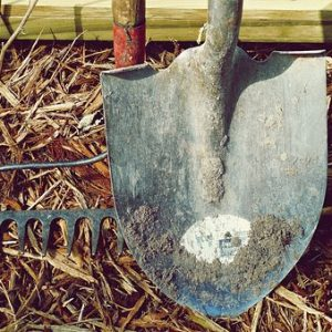 10 Must Have Gardening Tools That You Need To Start Gardening [Buying Guide]