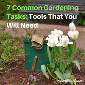 7 Common Gardening Tasks: Tools That You Will Need