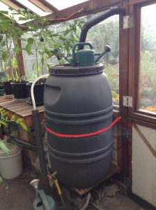 Greenhouse water barrel