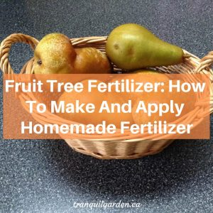 Fruit Tree Fertilizer: How To Make And Apply Homemade Fertilizer [+ Video]