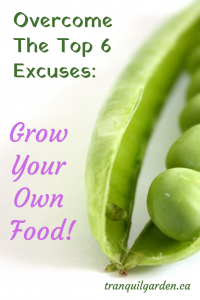 How To Overcome The Top 6 Excuses Not To Grow Your Own Food - What are your excuses not to grow your own food? Are you looking for ways to overcome your lack of space, time, knowledge, money, energy and/or motivation?