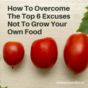 How To Overcome The Top 6 Excuses Not To Grow Your Own Food