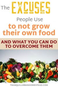 How To Overcome Your Excuses To Not Grow Food 6