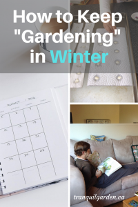 How a Gardener can be Productive in Winter - Stuck indoors with a raging storm outside? But you have that itch to do something gardening related? There are some interesting tasks you can still do in winter.
