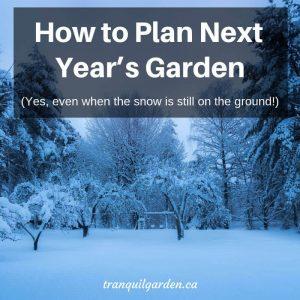 How to Plan Next Year's Garden