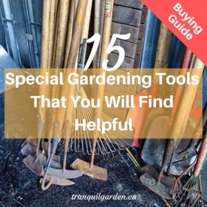 long handled garden tools leaning against shed wall and overlay text for buying guide