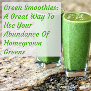 Green smoothies on granite counter