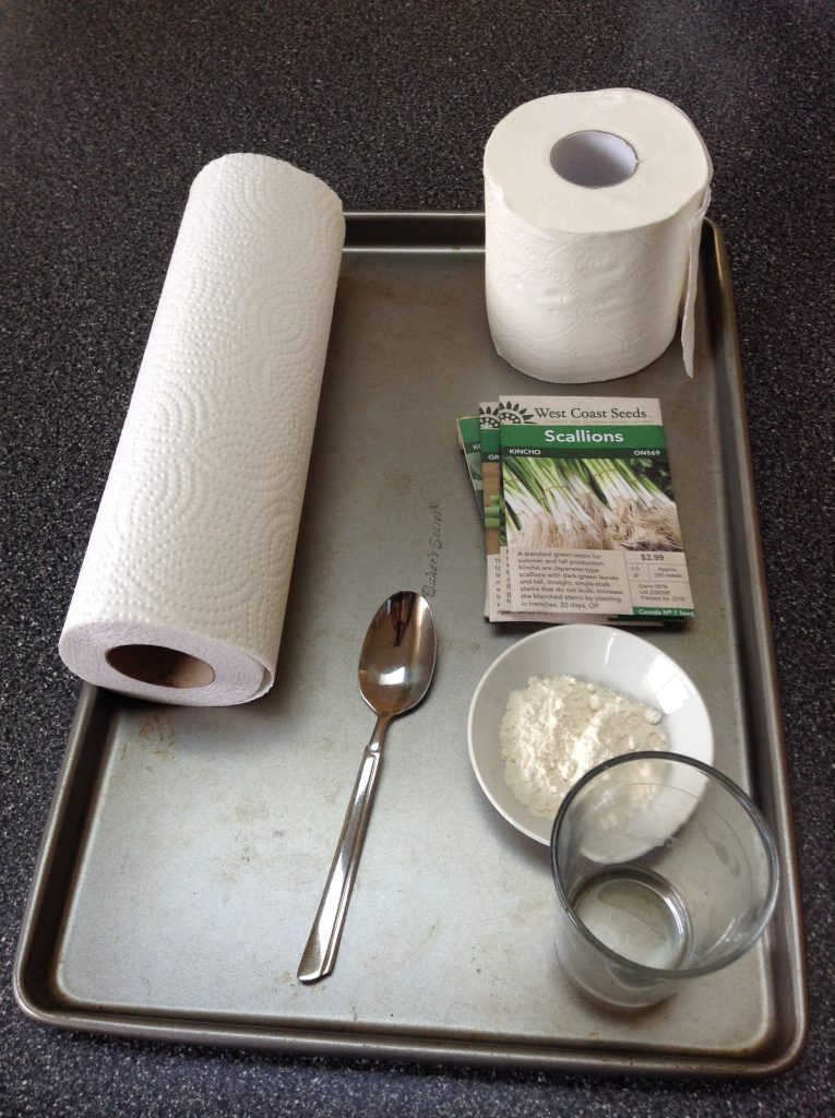 How to Easily Make Seed Tape and Sheets