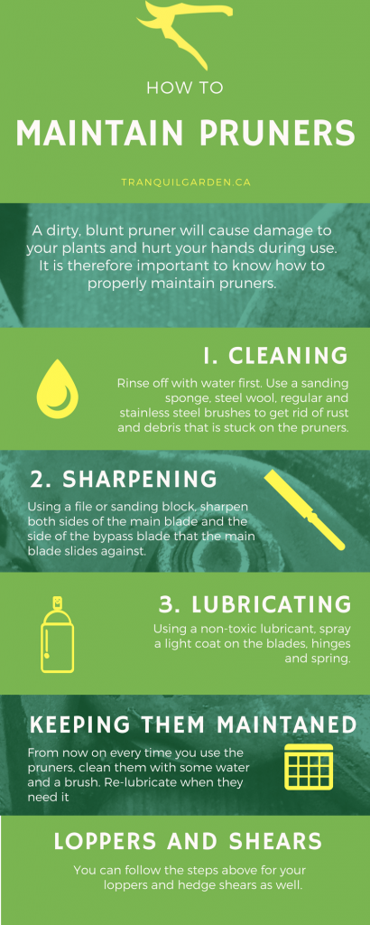 Maintain Pruners Infographic