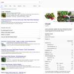 google search for chard