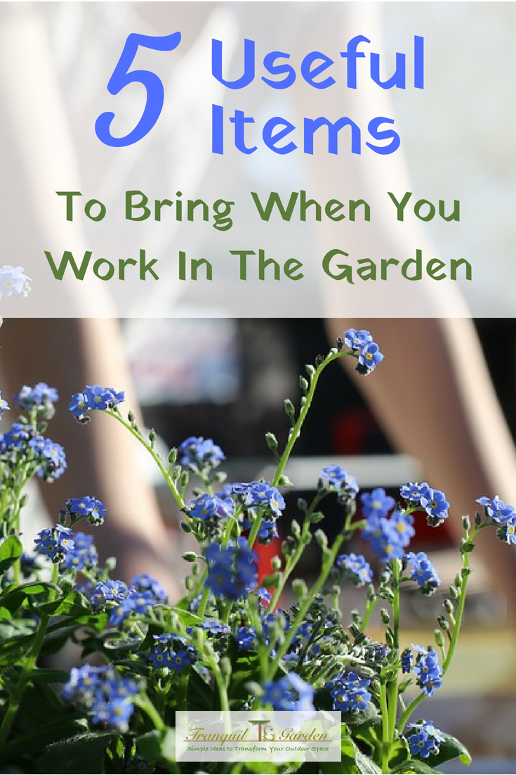 5 Useful Items To Bring When You Work In The Garden - When you spend a large part of your day in your garden, you want it to be enjoyable and productive. There are some items that you should bring with you to help with that.