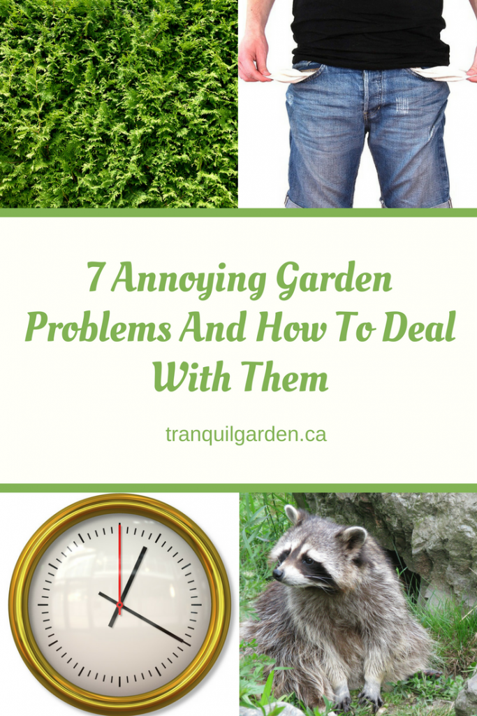 7 annoying problems
