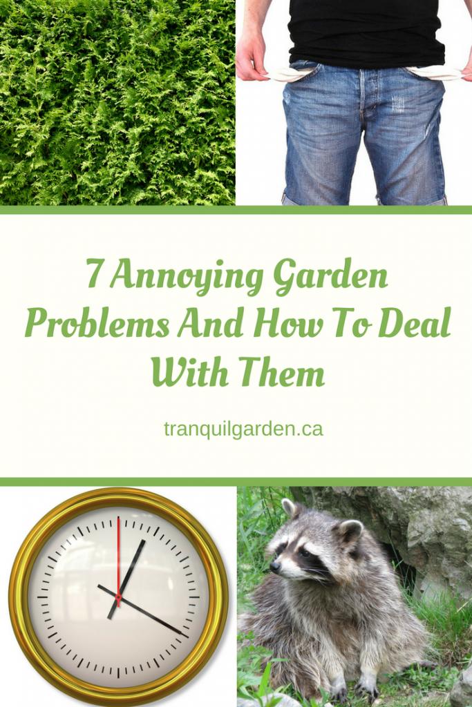 7 annoying problems
