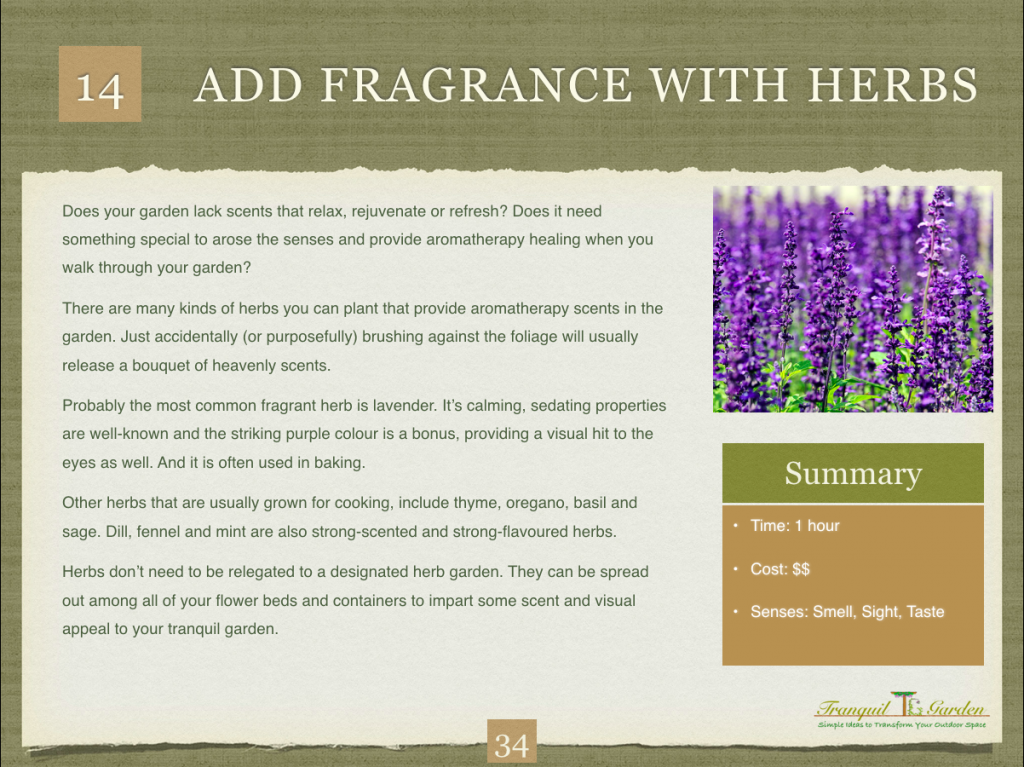 Fragrant Herbs page 1