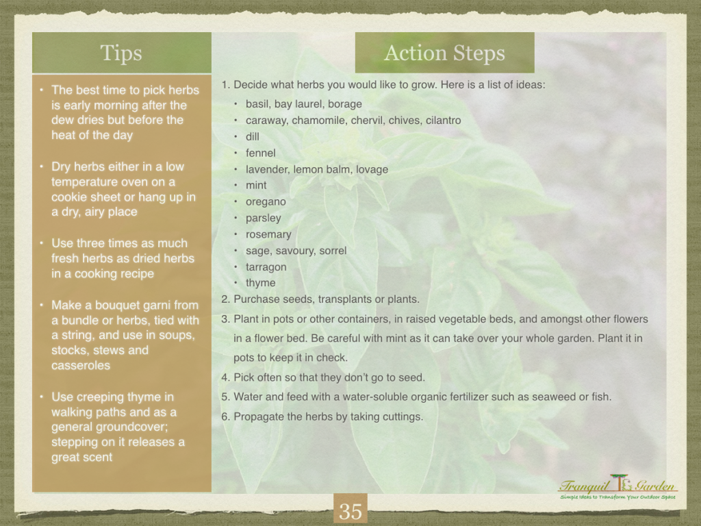 Fragrant Herbs page 2