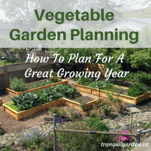 Vegetable Garden Planning 101: How To Plan For A Great Growing Year