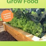 raised bed with lettuce and broccoli