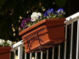 Planter with flowers hanging on Deck Railiing