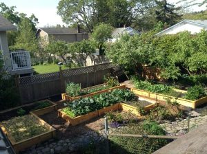 Raised beds - part shade