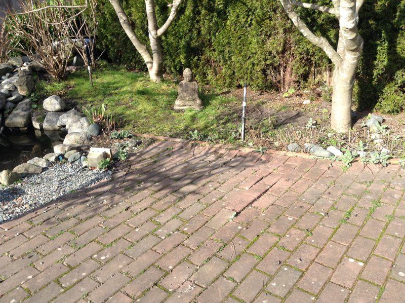 Marking up garden photos