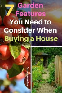 7 Garden Features You Need to Consider When Buying a House - When buying a new house, you need to consider certain features that will impact your ability to have a successful urban homestead. So before you put in an offer, make sure you have ticked off these essential garden features.