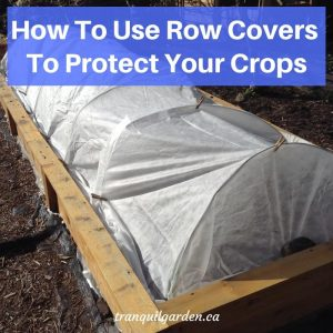 How To Use Row Covers To Protect Your Crops