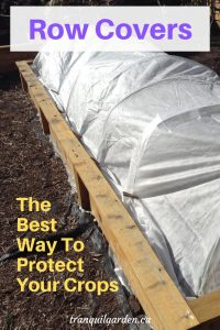 row cover on a raised bed with overlay text