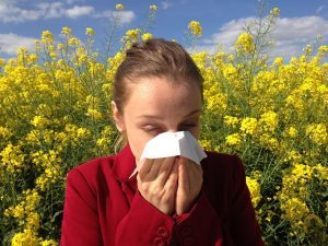 How To Avoid Allergy Attacks When In Your Garden