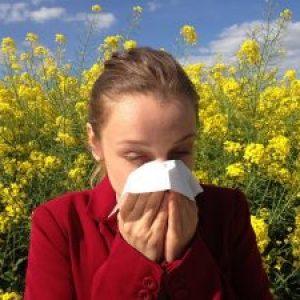 How To Avoid Allergy Attacks When In Your Garden