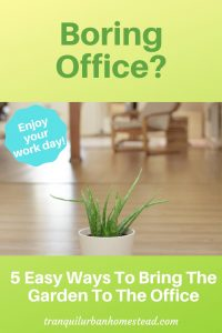 green plant in office