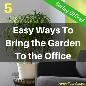 Do you just dread going to work as it means sitting in an office all day? Do you miss your garden at work? There are some ways to bring the garden to the office and stay sane.