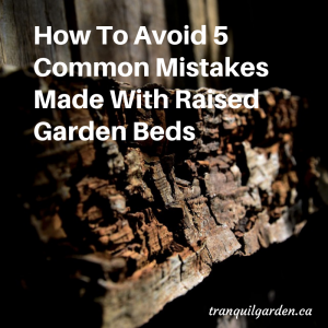 How To Avoid 5 Common Mistakes Made With Raised Garden Beds