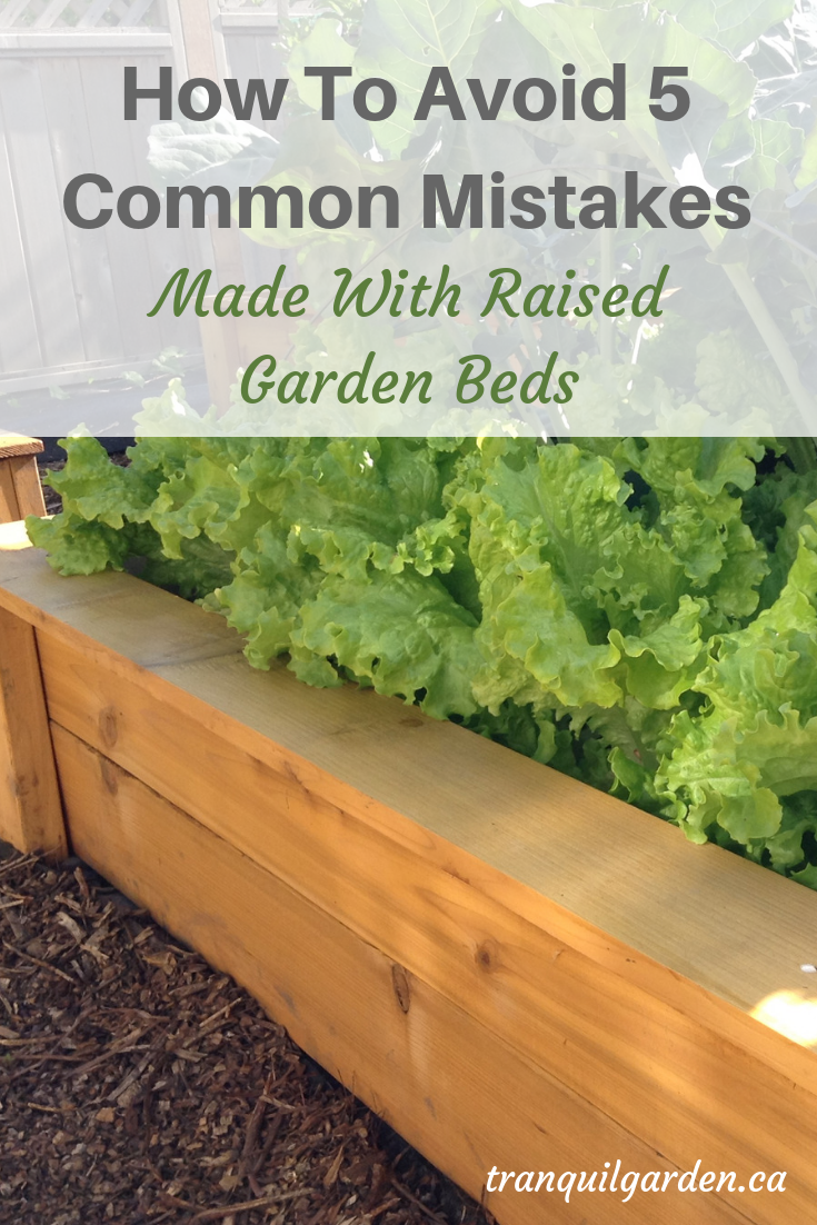 Raised garden beds have many advantages over traditional in-ground beds. However there are some mistakes that gardeners keep making with raised beds. How can you avoid making these mistakes yourself? #raisedgardenbeds #raisedbedmistakes