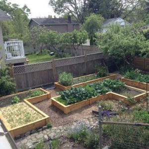How To Avoid 5 Common Mistakes Made When Building Raised Garden Beds