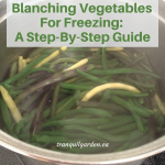 Blanching Vegetables For Freezing: A Step-By-Step Guide