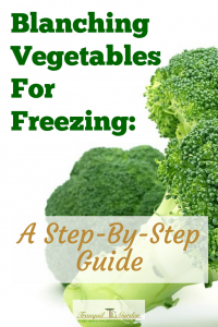 Blanching Vegetables For Freezing: A Step-By-Step Guide - Do you have too many vegetables? Blanching vegetables helps preserve the colour and texture when freeze your harvest. Learn how in a few simple steps.