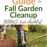 Fall Garden Cleanup