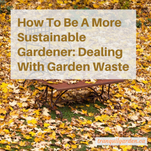 How To Be A More Sustainable Gardener: Dealing With Garden Waste