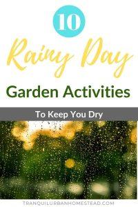 10 rainy day garden activities